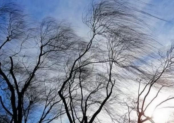 В Барнауле и области прогнозируется непогода